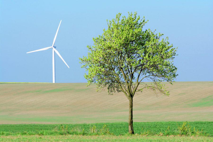 Windrad mit Baum im Vordergrund, Symbolbild